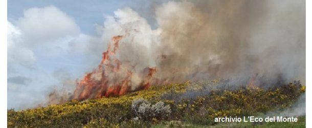 Proroga fino al 15 settembre del divieto di abbruciamento e combustione all'aperto – Ordinanza di Juri Taglioli, sindaco di Vicopisano