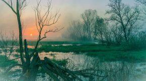 Sabato 5 ottobre si torna a pulire l'oasi di Tanali con le associazioni