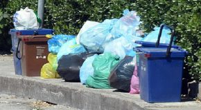 Rifiuti a Cascina, la replica dell'assessore Del Seppia al PD: «La raccolta differenziata sfiora l'80%»