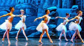 Al teatro Verdi di Casciana Terme la compagnia nazionale Raffaele Paganini in 'Il lago dei cigni'