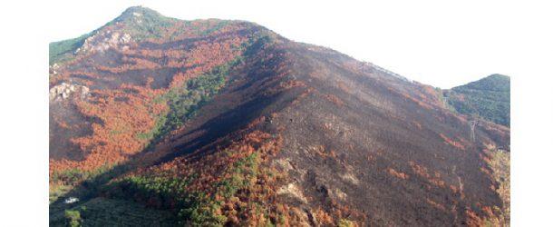 """""""In Vespa per il Serra"""", Vesparaduno in aiuto al Monte Pisano per domenica 28 ottobre !"""
