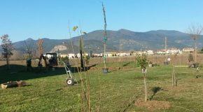 Lavori nel giardino della scuola primaria a Fornacette