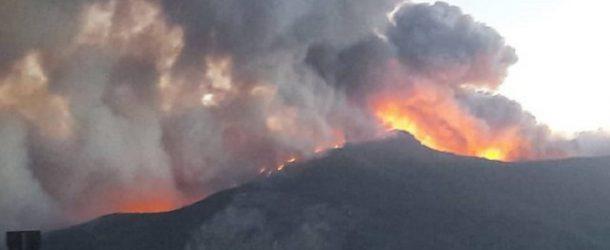 Messa in sicurezza del Monte Pisano a seguito dell'incendio del settembre 2018
