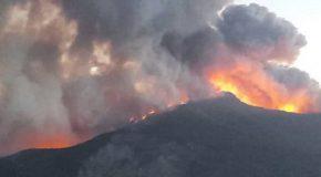 Avviso per l'assegnazione di fondi a chi subito danni, a seguito dell'incendio del Monte Pisano