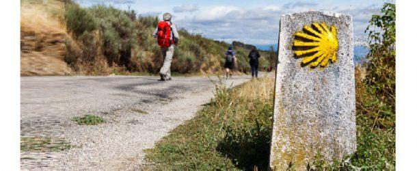 """A Calcinaia """"Il cammino di Santiago"""""""