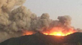 La dichiarazione del presidente del C.V.T. (coordinamento volontario toscano) dopo il fermo del presunto responsabile dell'incendio di settembre