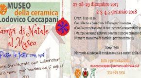 Al via i campi di Natale al museo Coccapani di Calcinaia