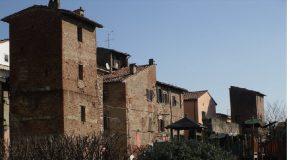 Cascina: da lunedì 8 a sabato 13 gennaio sosta vietata per potatura alberi in Viale Comaschi