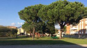 Lavori per ripristinare la pubblica illuminazione a Casciavola
