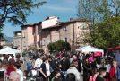"""""""Social day"""" a Calcinaia: 200 studenti per una raccolta di oltre duemila €uro"""