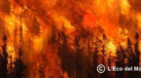 Le fiamme sul monte pisano continuano a far paura