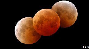 Questa sera naso all'insù, sparisce la luna !!!