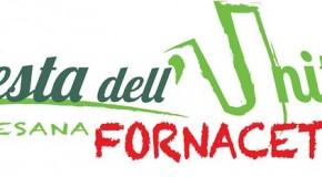DAL 5 LUGLIO AL 4 AGOSTO, AL PARCO DELLA FORNACE AL VIA LA FESTA DELL'UNITÀ PAESANA DI FORNACETTE (PISA)