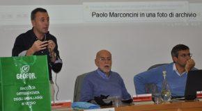 PAOLO MARCONCINI NON E' PIU' PRESIDENTE DI GEOFOR