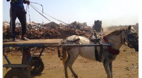Formazione agli agricoltori senegalesi. L'Unione Valdera capofila del progetto a sostegno del comune di Malika (Senegal)