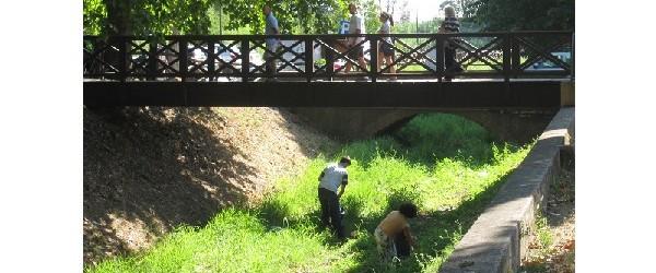 BONIFICA DEL LETTO DEL RIO GRANDE A VICOPISANO: SOTTO IL SOLLEONE I VOLONTARI HANNO SGOBBATO DURO…