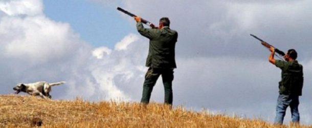 """A caccia di """"tesserini"""" ! Da oggi 20 agosto, le consegne nel comune di Calcinaia"""