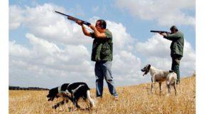 Il calendario di ritiro dei tesserini di caccia nel comune di Pontedera