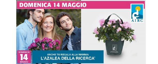 BICINCITTÀ 2017 E AZALEA DELLA RICERCA INSIEME IN PIAZZA DOMENICA 14 MAGGIO